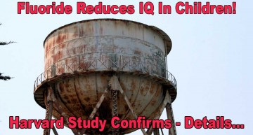 Fluoridated Water Reduces Children's IQ – Harvard Study Confirms