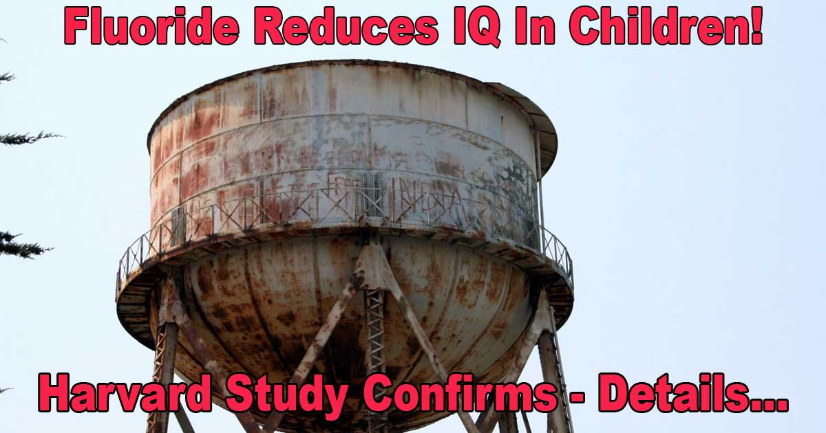 Fluoride Reduces Child IQ