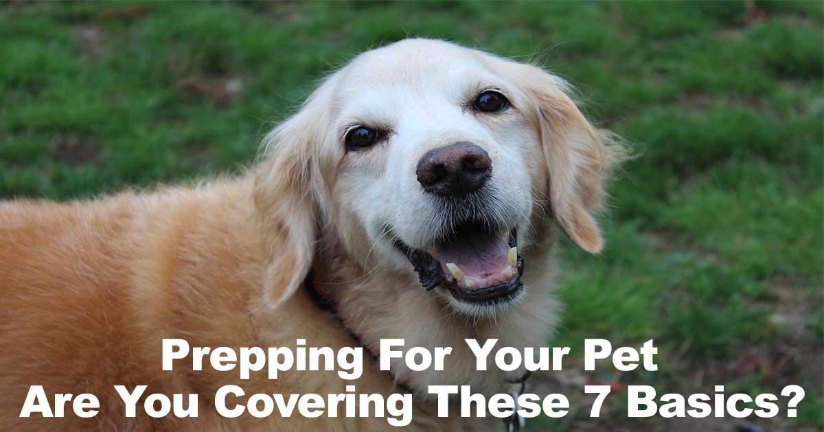 Pet Prepping