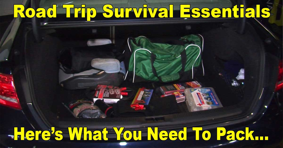 Road Trip Survival