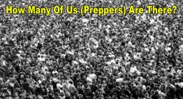 How Many Us (Preppers) Are There?