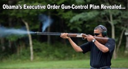 Obama's Executive Order Gun-Control Plan Revealed