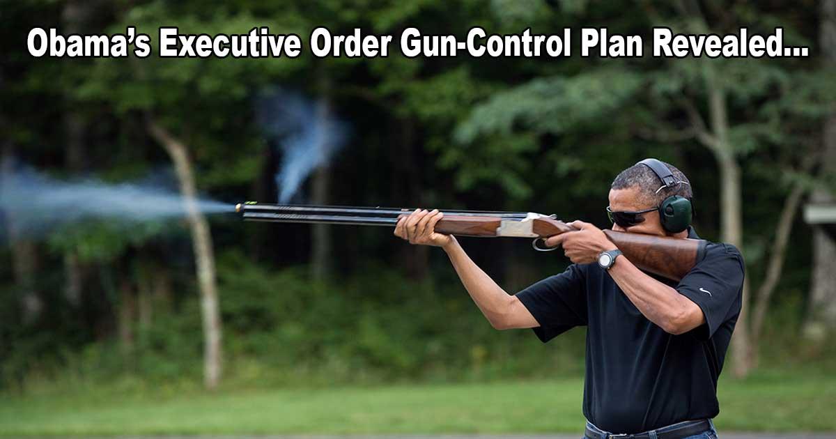 Obama Gun Control Plan