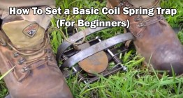 How To Set a Basic Coil Spring Trap (For Beginners)