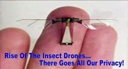 The Rise of the Insect Drones – There Goes the Last of Your Privacy!