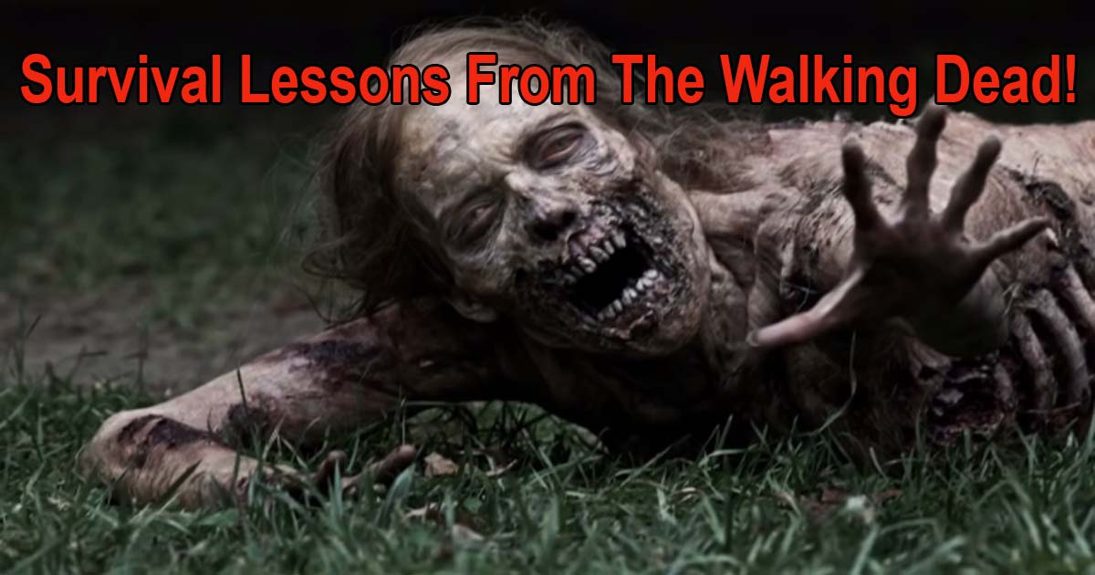 Survival Lessons Walking Dead