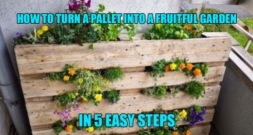 How To Turn A Pallet Into A Fruitful Garden In 5 Easy Steps